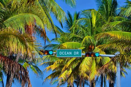 Street sign of famous Ocean Drive with coconut palm trees at Art Deco District, South Beach Miami, Florida, United States