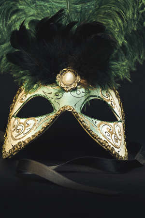 dressing up costume: Venetian Mask