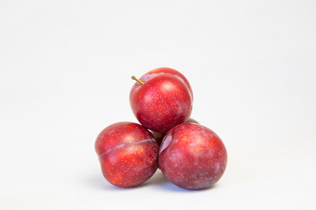 apricot kernels: There are many apricot plum  Stock Photo