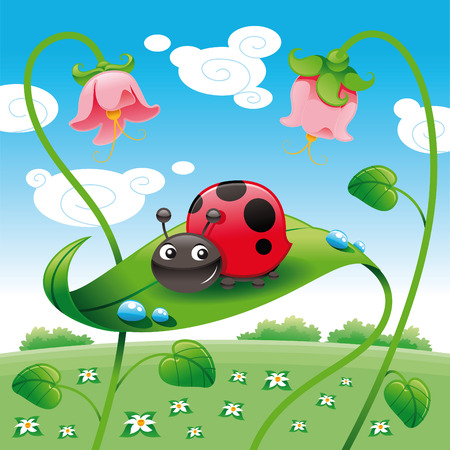 cartoon ladybug: Ladybird on the leaf, vector and cartoon character