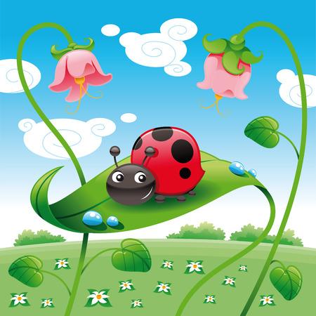 mariquita caricatura: Mariquita sobre la hoja, el vector y dibujos animados