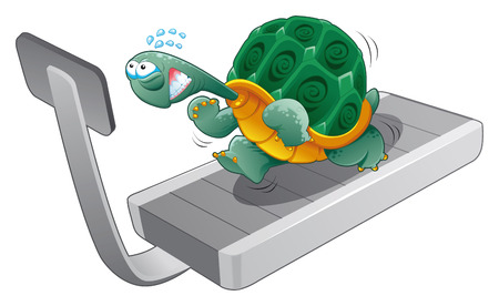 Turtle fitness, cartoon and vector character Vector