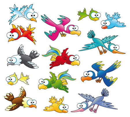 flier: Family of birds, cartoon and vector characters