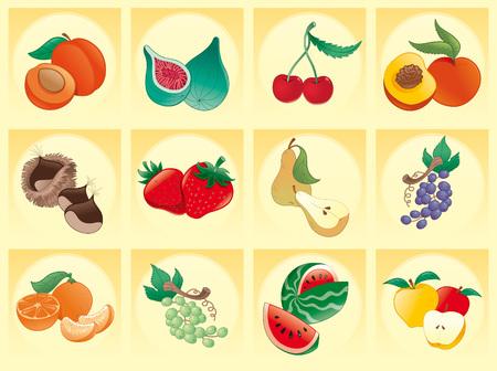 fichi: Frutta con illustrazione vettoriale-sfondo