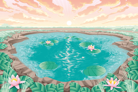 nymph: Cartoon pond with lotus, vector and artistic landscape