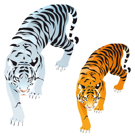 Tigers. Cartoon and vector animals Vector