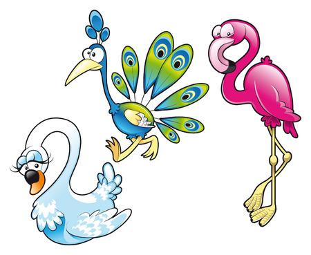 Peacock Swan Flamingo. Cartoon and vector characters Stock Vector - 5600115