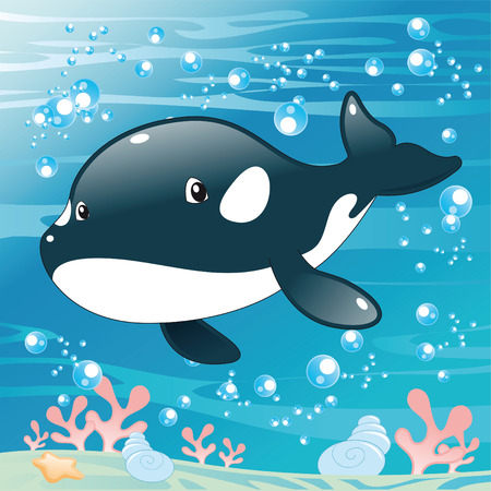 tenderly: Baby Killer Whale. Cartoon and vector illustration. Illustration