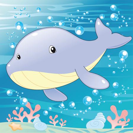 ballena azul: Bebé ballena. Dibujos animados e ilustración vectorial.