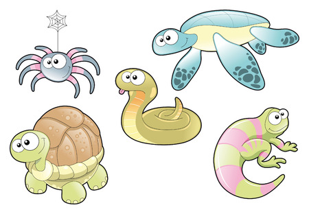 spider: Reptiles and Spider, Family. Cartoon and vector characters. Illustration