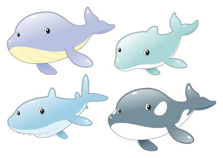 tenderly: Ocean Fish Family: delfini, squali, balene e Killer Whale. Ocean Fish Family: delfini, squali, balene e Killer Whale Vettoriali