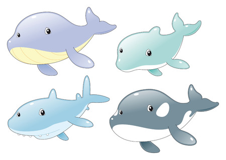 Ocean Fish Family: Dolphin, Shark, Whale and Killer Whale. Ocean Fish Family: Dolphin, Shark, Whale and Killer Whale Vector