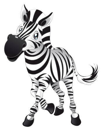 safari animal: Baby Zebra. Funny cartoon and animal character