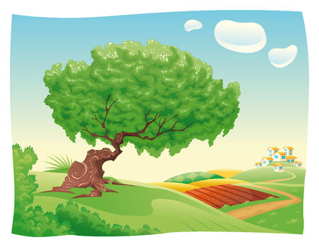 rural land: Countryside.cartoon landscape. Objects isolated.