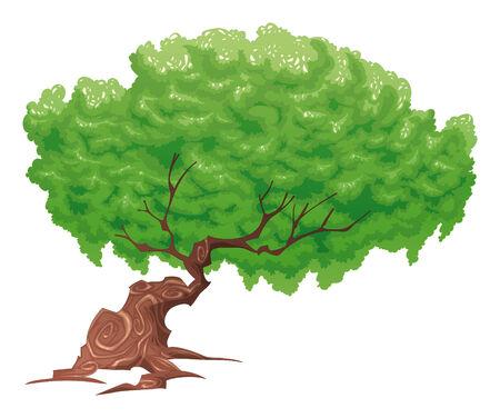 bucolic: Albero, oggetto isolato.
