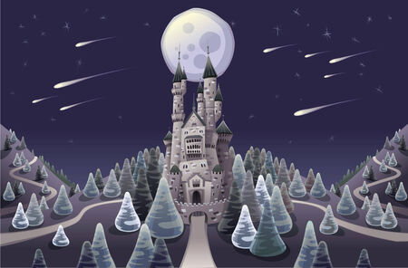 Panorama with medieval castle in the night. Cartoon illustration