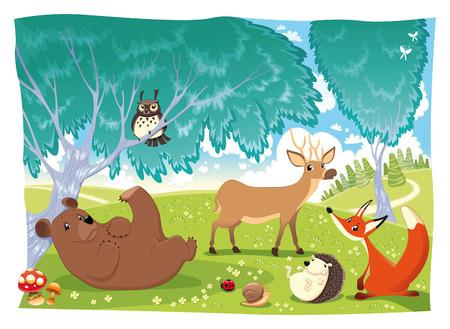 egel: Dieren in het bos.