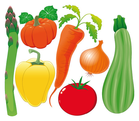zucchini: Ilustraci�n de familia vegetal, objetos aislados.