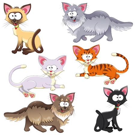 gato caricatura: Familia de los gatos. Personajes animales divertidos dibujos animados y vector. Objetos aislados