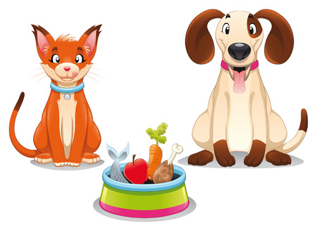 Gato y perro con alimentos. Divertidos dibujos animados y vector escena, objetos aislados.