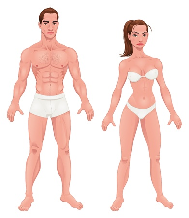 male body: Man and Woman. Vector isolated characters