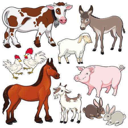 Farm animals. Vector and cartoon isolated characters.