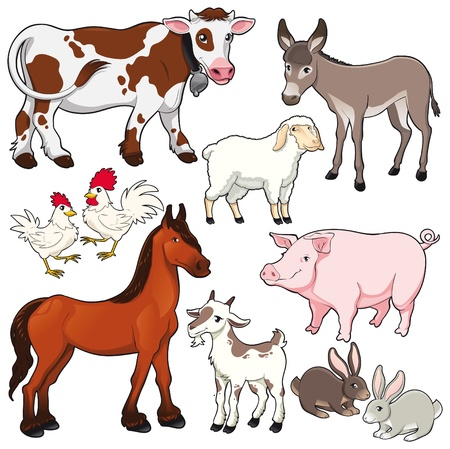 Farm animals. Vector and cartoon isolated characters.  Stock Vector - 10473148