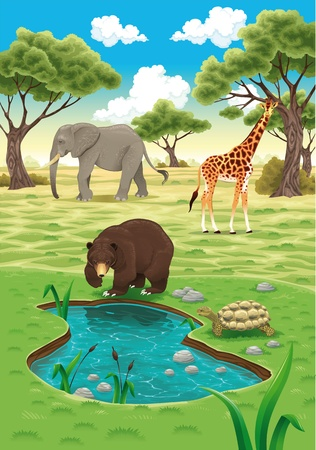 habitats: Animals in the nature realistic illustration.
