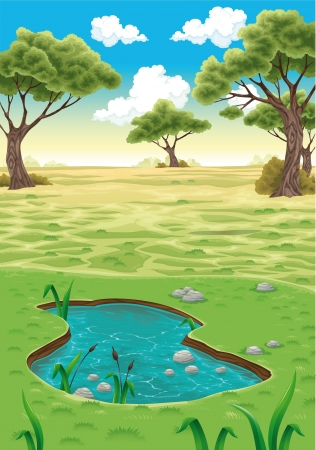 ecosystems: Natural landscape  Vector realistic illustration