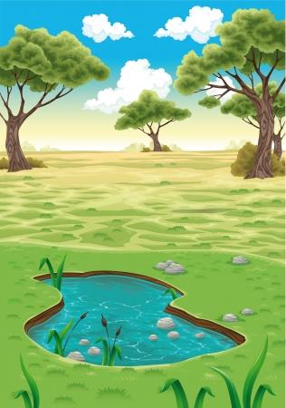 woods lake: Natural Vector illustration paesaggio realistico