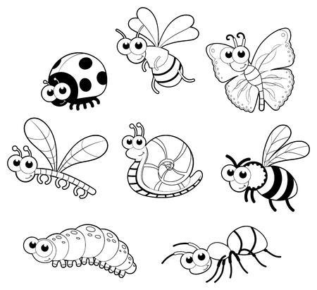 Bugs   1 snail.