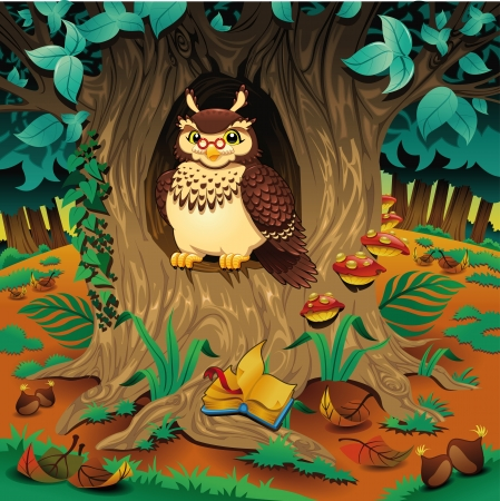 Scene with owl. Cartoon and vector illustration.  Vector
