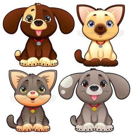 perro familia: Perros lindos y gatos. Divertidos dibujos animados y personajes de vectores animales, objetos aislados.