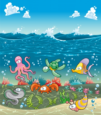 shell fish: Family of marine animals under the sea. Funny cartoon and vector illustration