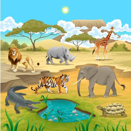 crocodile: Animales africanos en la naturaleza. Ilustración vectorial Vectores