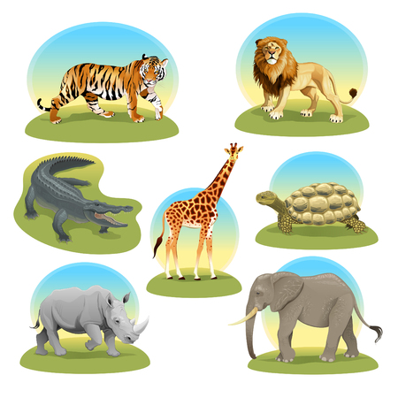 African animals with graphic backgrounds. Vector illustration, isolated objects. Vetores