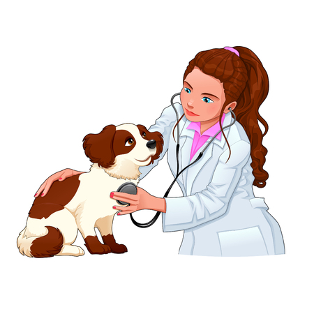 Veterinary with dog. Funny cartoon and vector illustration, isolated characters.