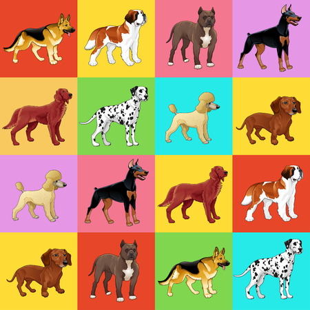 Set of dog with background. For a possible packaging or graphic. Vector