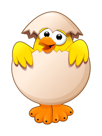 egg cartoon: Funny chick in the egg. Cartoon and vector isolated character. Illustration