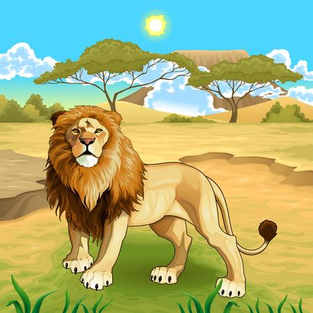 African landscape with lion king. Illustration