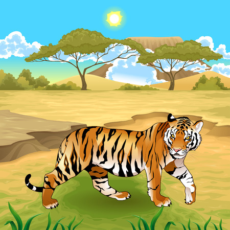African landscape with tiger.