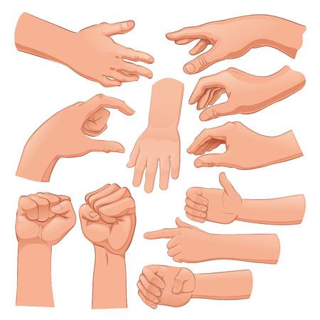mani cartoon: Set di diverse mani. Cartoni animati e oggetti vettoriali isolato