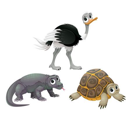 australian animal: Animales australianos divertidos, avestruz, tortugas y dragones de Komodo. Aislado Vector de dibujos animados personajes.