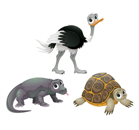 australian animals: Funny Australian animals, ostrich, turtle and Komodo dragon. Vector cartoon isolated characters.
