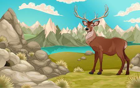 montagna: Paesaggio montano con i cervi. Vector cartoon illustrazione