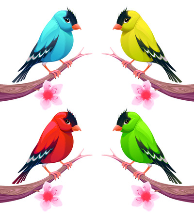 goldfinch: Group of birds in different color tones. Vector cartoon isolated characters. Illustration