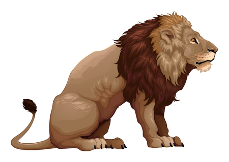 Profile of a sitting lion.  cartoon illustration