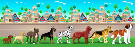 Collection of purebred dogs aligned on the town view. Vector cartoon illustration Illustration