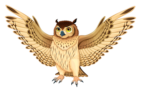 Funny owl with opened wings. Vector cartoon isolated animal. Vettoriali