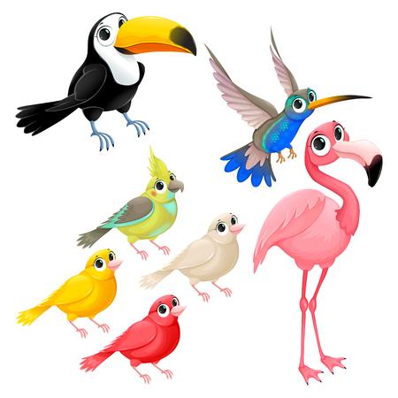 Gruppe lustige tropische Vögel . Vector Cartoon isoliert Zeichen Standard-Bild - 98294164